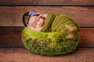 8 day old newborn baby girl sleeping in a green basket. She is swaddled in gauzy green material.